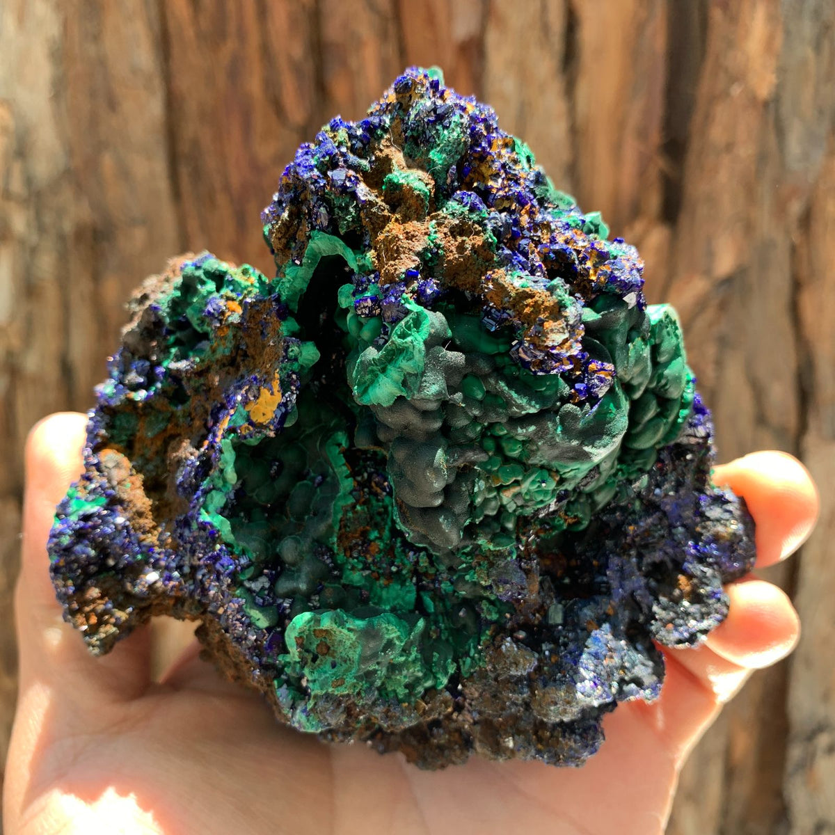 10.5cm 614g Azurite from Sepon Mine, Laos
