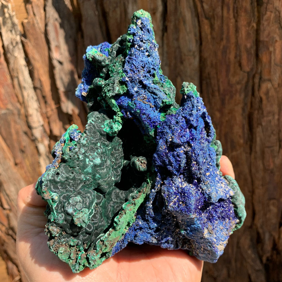 14.5cm 858g Azurite from Sepon Mine, Laos