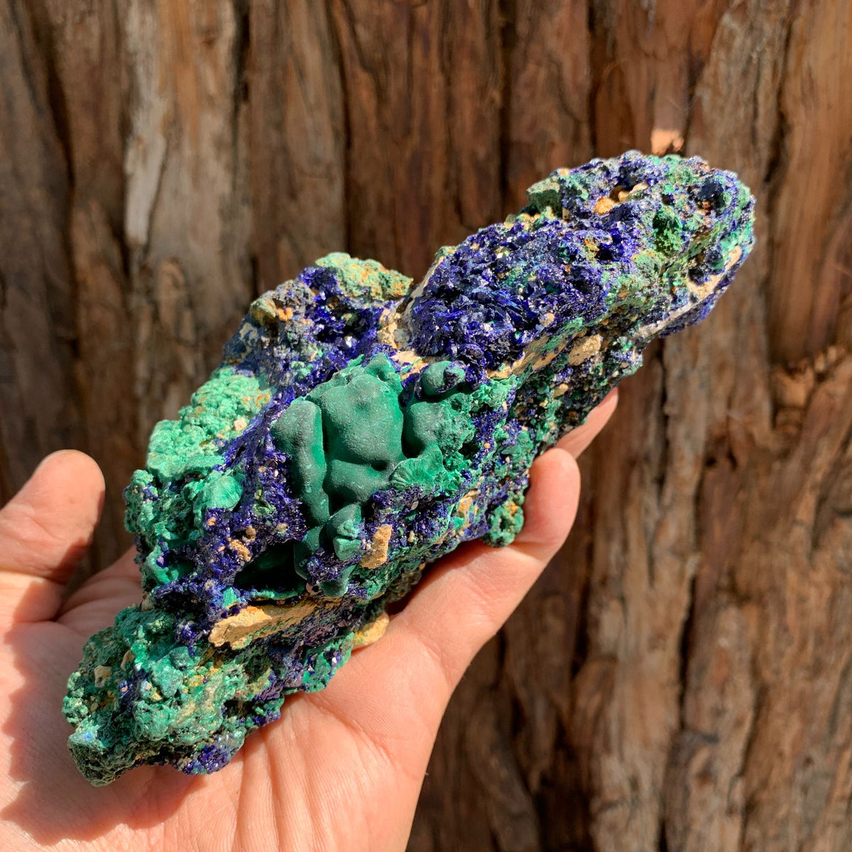 16.5cm 618g Azurite from Sepon Mine, Laos