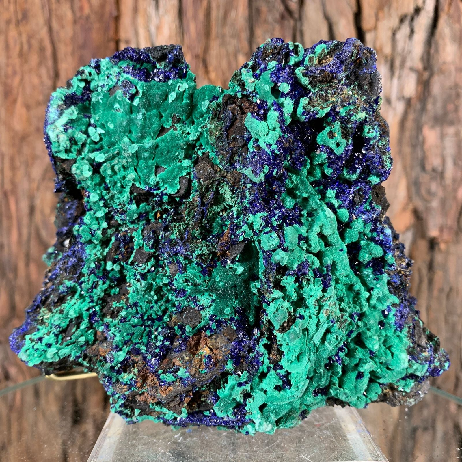 13cm 862g Azurite with Malachite from Sepon Mine, Laos