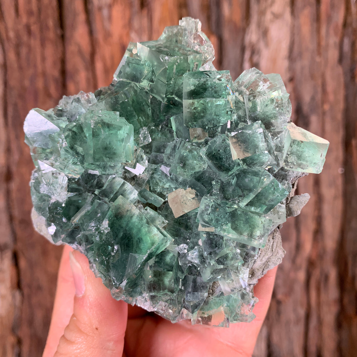 10cm 316g Clear Green Fluorite from Xianghualing Mine, China
