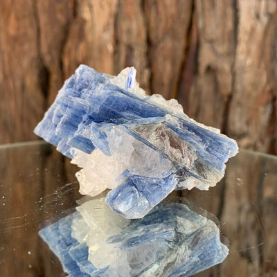 6.5cm 96g Kyanite with Quartz Crystal from Brazil