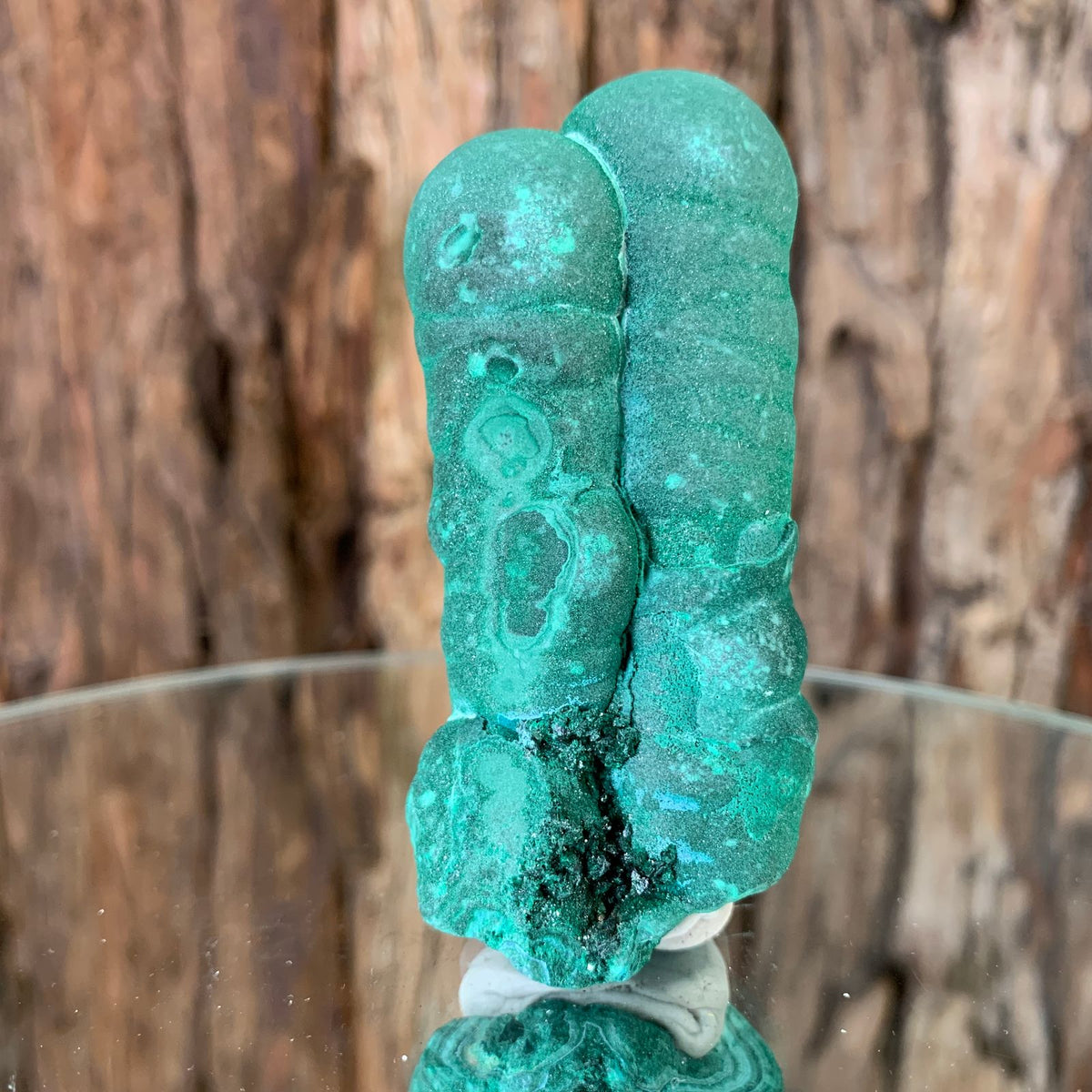 8cm 136g Malachite Stalactite from Sepon Mine, Laos