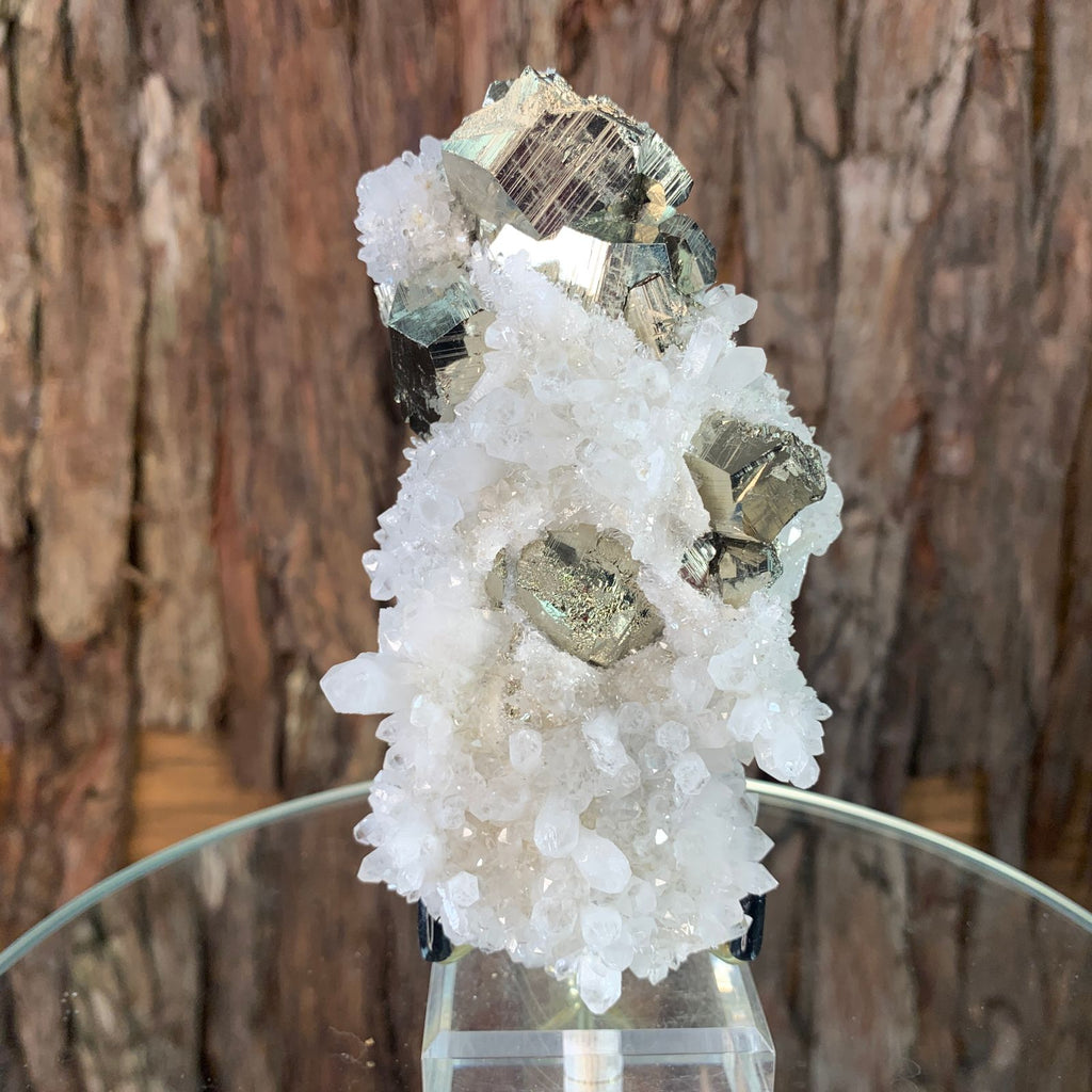 12.4cm 446g Clear Quartz with Pyrite from Myanmar