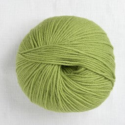 220 Superwash 286 Peridot