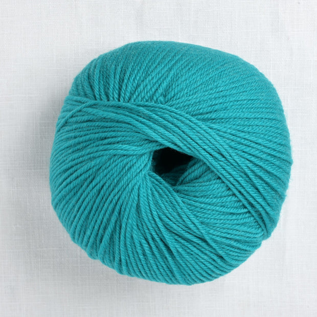 220 Superwash 810 Teal