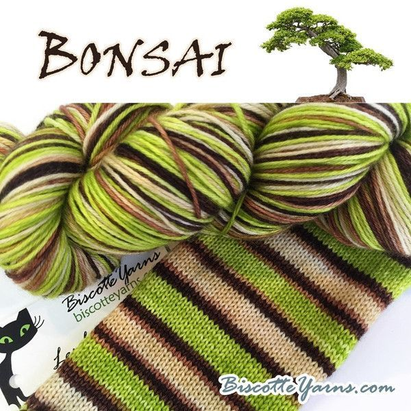 Biscotte Sock Bonsai