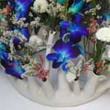 Porcelain  Tulipiere