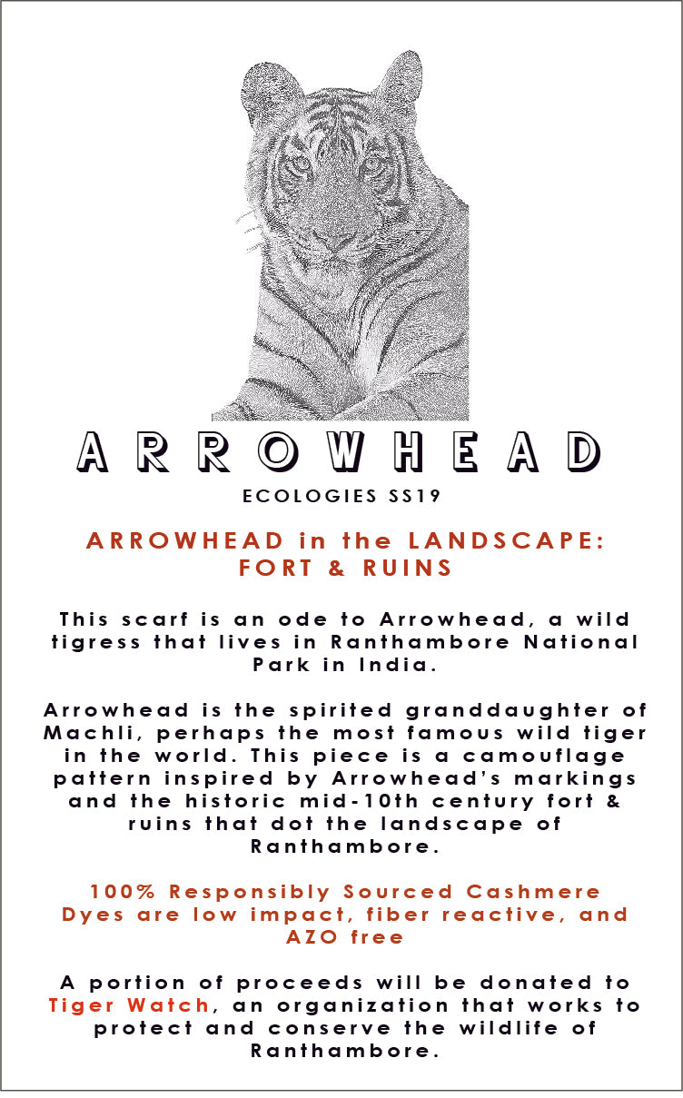 ARROWHEAD in the Landscape Scarf