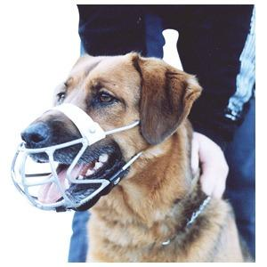 Dog Muzzle Industrial Pup 202120 - Redfarm Supplies - Shoof - Strzelecki Trading