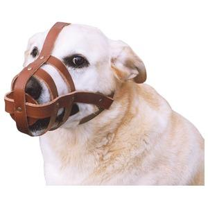 Dog Muzzle Leather Medium 202123 - Redfarm Supplies - Shoof - Strzelecki Trading