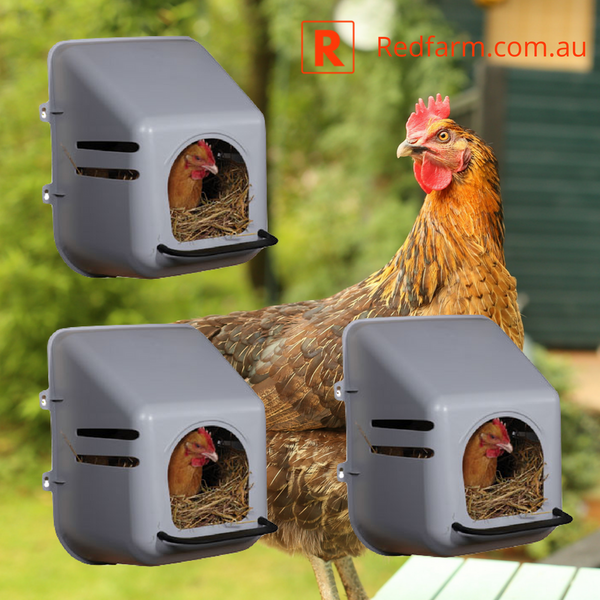 3 x Poultry, Chicken, Nesting Box Wall Mount - Redfarm Supplies - Shoof - Strzelecki Trading