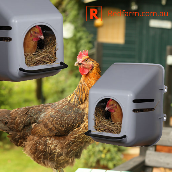 Poultry Nesting Box Wall Mount 218542 - Redfarm Supplies - Shoof - Strzelecki Trading