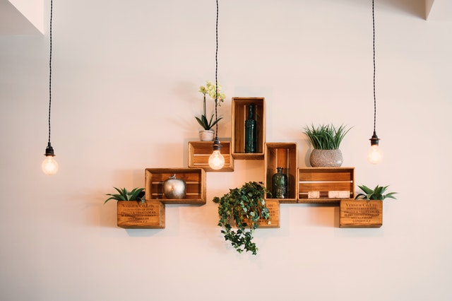 Wooden floating shelves with potted plants and hanging lights