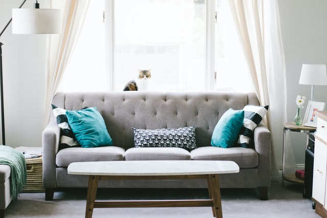 Grey sofa with tight back in front of window