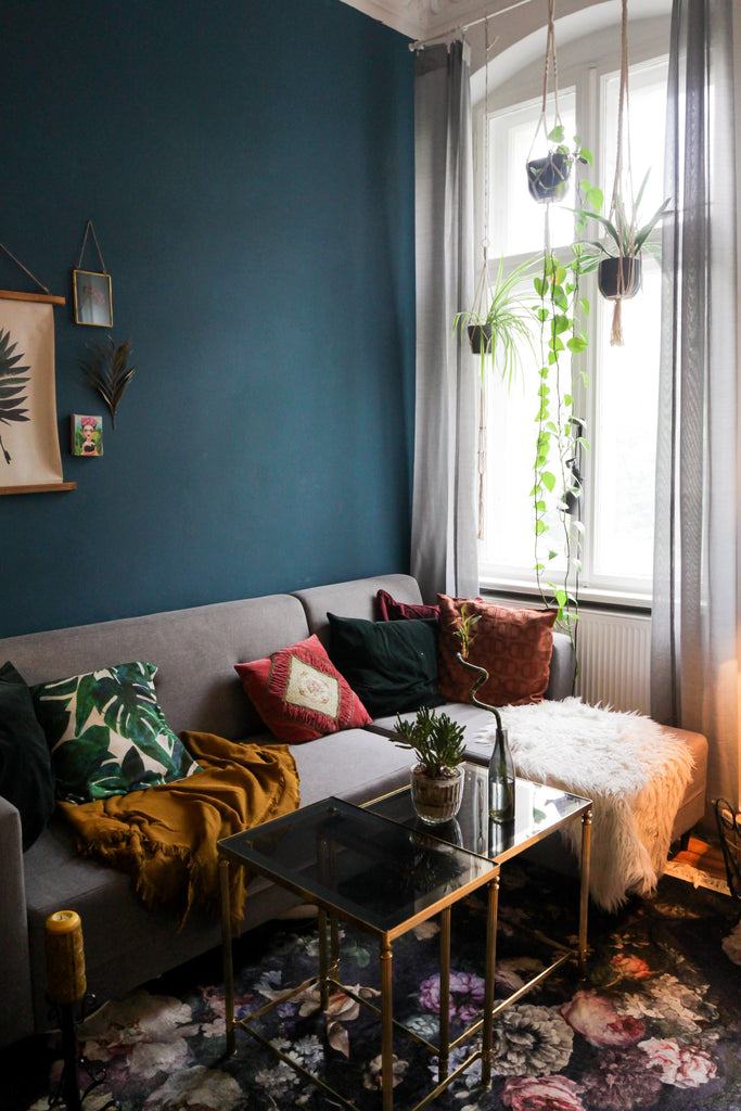 navy blue colored walls