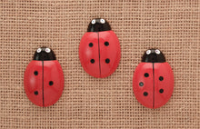 Load image into Gallery viewer, Ladybug counting stones