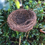 Wicker nest