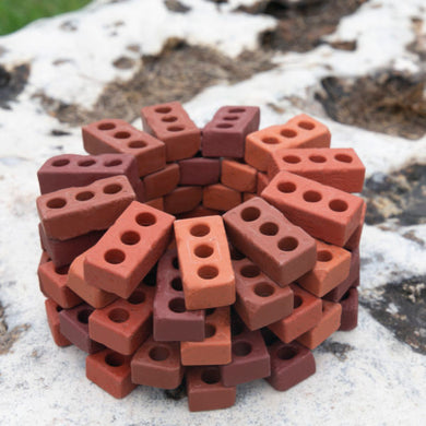 Small bricks (pack 20)