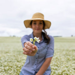 women with brown hair, in a blue shirt and straw hat kneeling in a meadowfoam field holding a meadowfoam flower in front of her