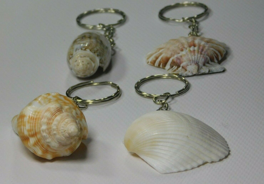 Seashell Keychains South Florida Lot of 4 Nautical