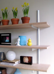 "36"" Wide Single Bay Wall Mounted Shelves with Standards and Brackets"