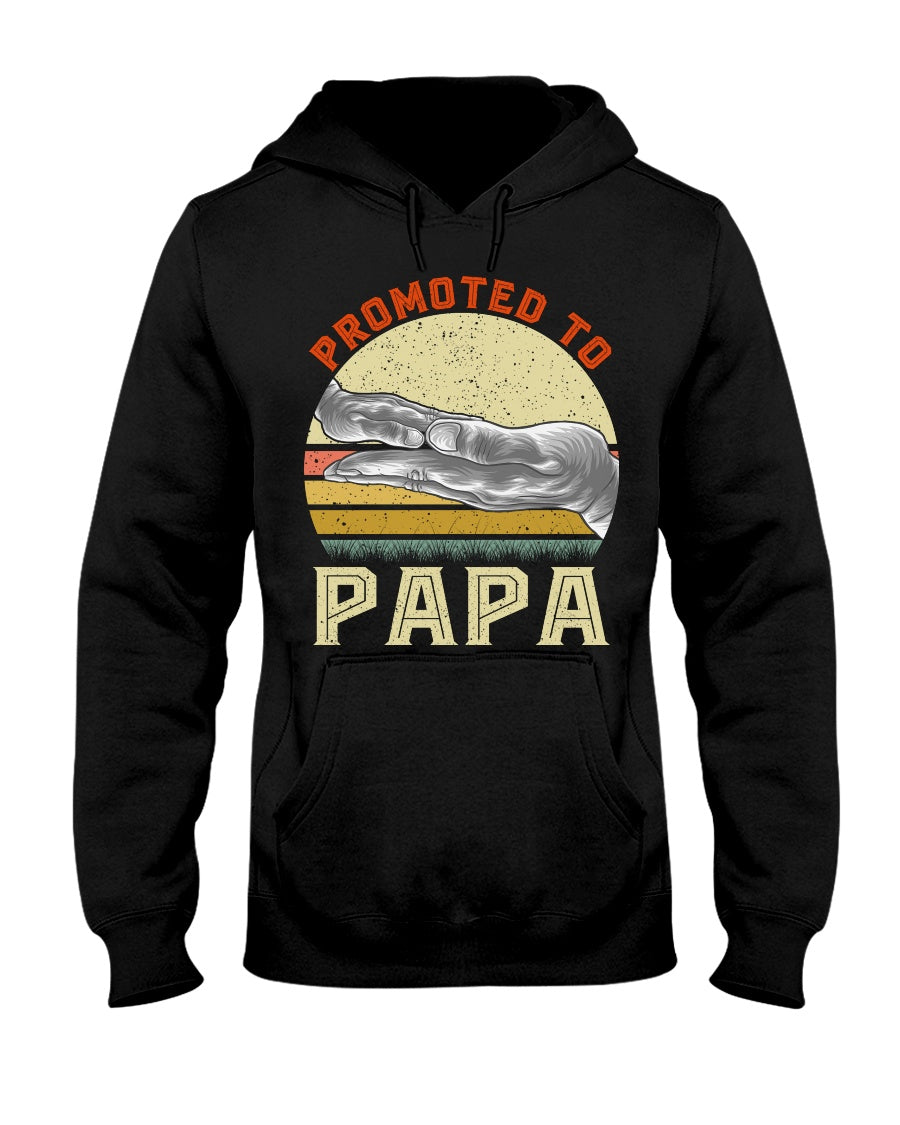 Promoted To Papa Funny Family Relationship Vintage Father's Day Tee