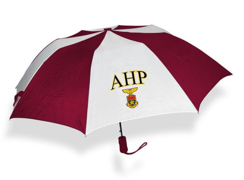 Alpha Eta Rho Crest Umbrella