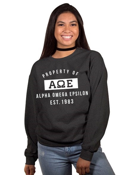 Alpha Omega Epsilon Property of Crewneck Sweatshirt