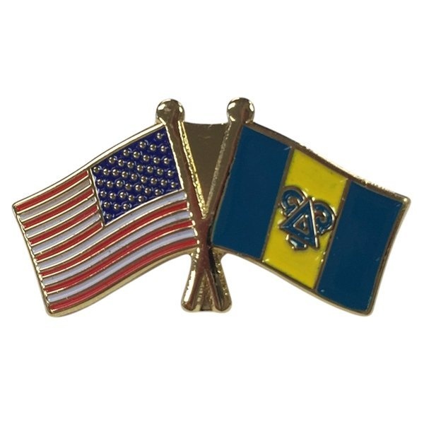 Delta Upsilon Fraternity Flag Pin