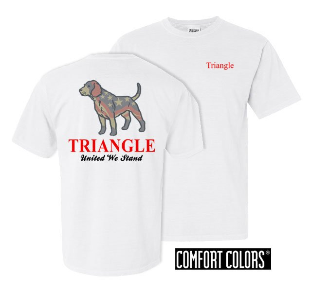 Triangle Stand Tall Comfort Colors Heavy Tee