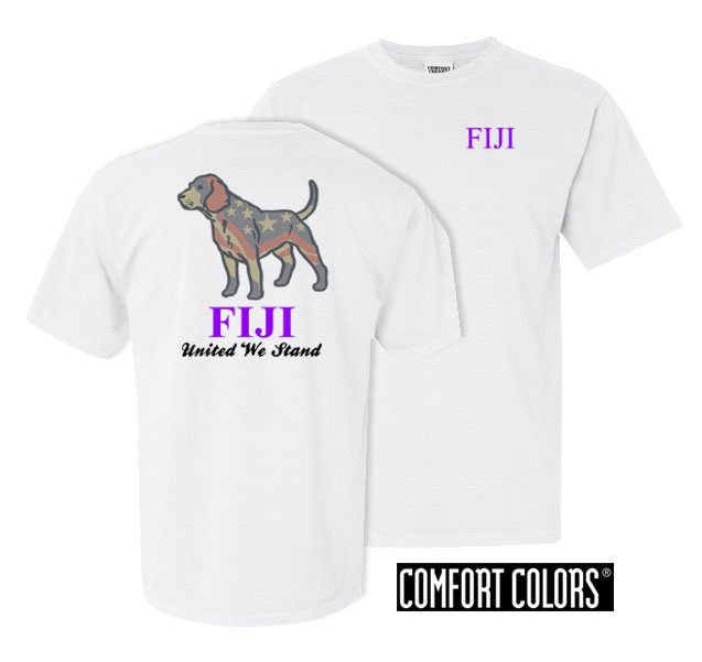 Phi Gamma Delta Stand Tall Comfort Colors Heavy Tee