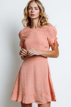 MONTE Robin Dress -