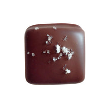 Load image into Gallery viewer, Chocolate Covered Salt Caramels