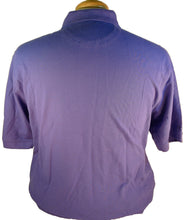 Load image into Gallery viewer, IZOD Matchcup Polo Blue