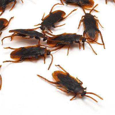 Realistic Fake Cockroaches 12/pcs Electric Solitude
