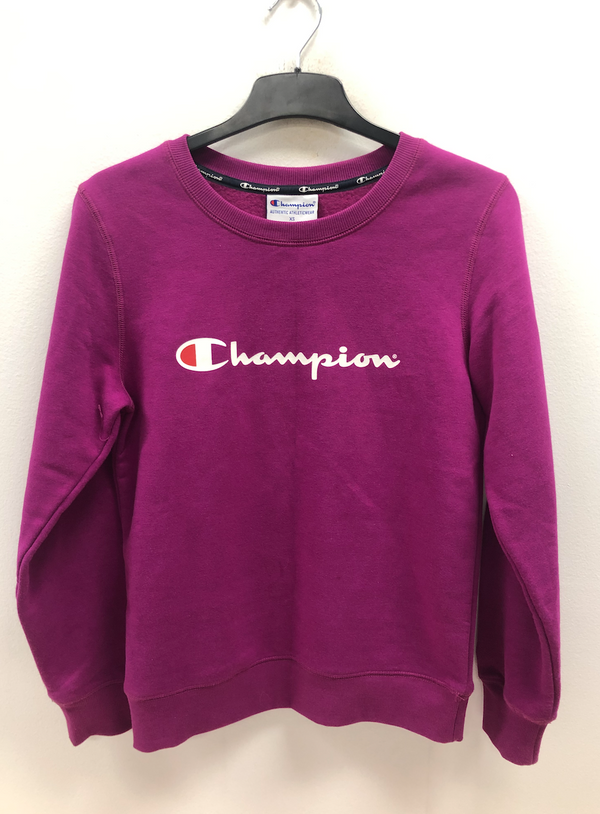 VINTAGE CHAMPION JUMPER- SIZE XS (WOMENS)