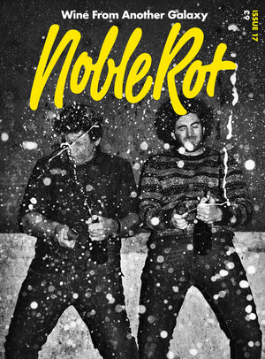 Noble Rot Magazine Issue 17 Champagne Underground