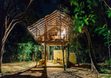 Sri Lanka Tree house yoga stay