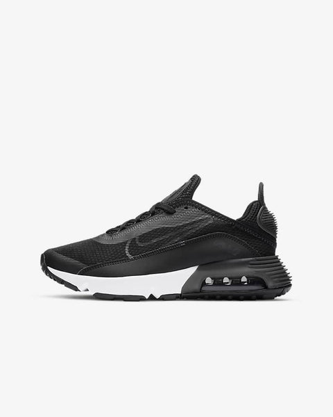 Nike Air Max 2090 GS DD3236-001