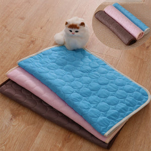 Summer Cooling Mats Blanket Pet Dog Bed Sofa Portable Tour Camping Yoga Sleeping Cooler Mats For Dogs Cats Pet Ice Silk Mat - Camping And Outdoor Supplies