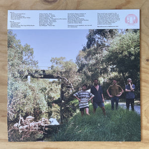 Surprise Chef - All News Is Good News (LP, RP) (M) - natural selection vinyl records