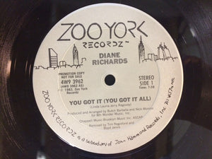"Diane Richards - You Got It (You Got It All) (12"", Promo) (VG+) - natural selection vinyl records"