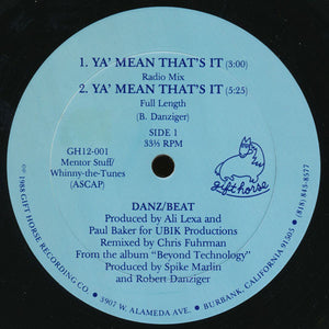"Danz/Beat - Ya' Mean That's It (12"") (G+) - natural selection vinyl records"