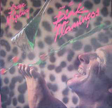 Load image into Gallery viewer, Dave McArtney & The Pink Flamingos - Dave McArtney & The Pink Flamingos (LP, Album) (NM or M-) - natural selection vinyl records