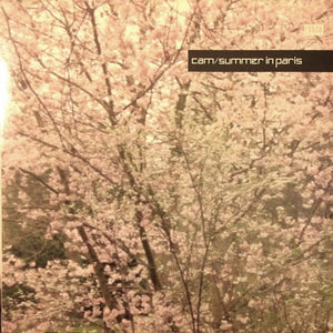 "DJ Cam - Summer In Paris (12"") (NM or M-) - natural selection vinyl records"