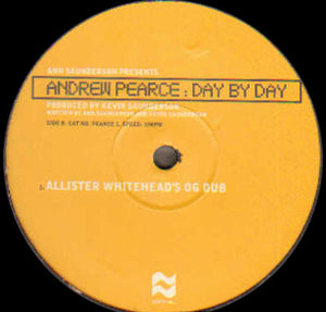 "Ann Saunderson Presents Andrew Pearce - Day By Day (2x12"", Ltd) (VG+) - natural selection vinyl records"