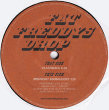 "Load image into Gallery viewer, Fat Freddy's Drop - Flashback (12"") (VG+) - natural selection vinyl records"
