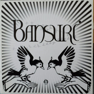 Bansuri - Bansuri (LP) (VG+) - natural selection vinyl records