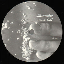 "Load image into Gallery viewer, Electronicat - Amour Salé (12"") (VG+) - natural selection vinyl records"